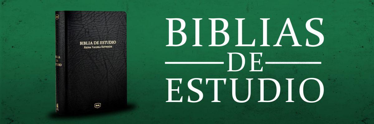 2. BANNER BIBLIAS ESTUDIO