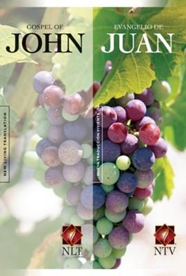 Evangelio de Juan / Gospel of John (Rústica) [Libro]