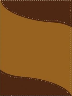 Biblia Bilingüe NIV-RVR 1960 (Piel italiana dúo tono. Marrón Claro/Oscuro) [Biblia]
