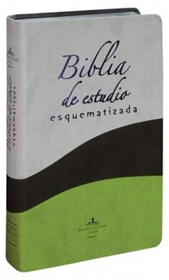 Biblia de Estudio Esquematizada (Imitación Piel dos tonos) [Biblia]