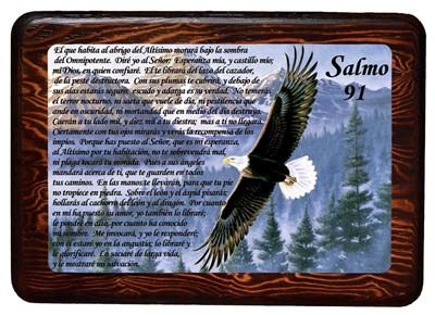 Salmo 91 (Cuadro con resina) [Miscelanea]