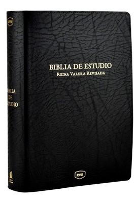 Santa Biblia de Estudio
