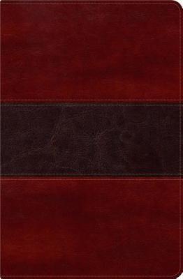 Biblia del Pescador con Indice RVR1960 (Símil Piel)