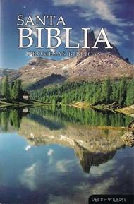 Santa Biblia Edición Promesa