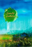 Santa Biblia RVR60 040LG CPA