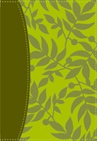 Santa Biblia de Estudio Serie 50 RVR 1960