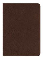 Santa Biblia NVI - Edición Regalo - Café marrón