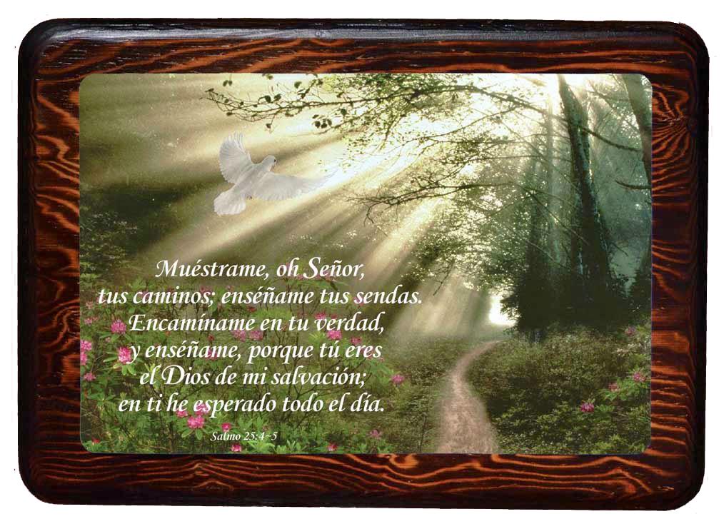Muestrame: Salmo 25:4-5 (092628716432): CLC Venezuela