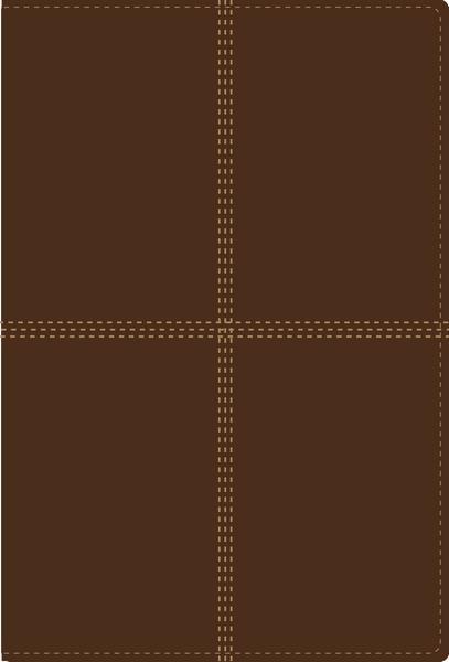 Biblia RVR1960/NVI Bilingue