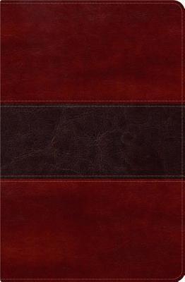 Biblia del Pescador con Indice RVR1960