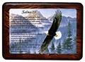 Salmo 23 (Cuadro con resina) [Miscelanea]